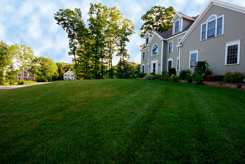 Landscaping Services North Hampton NH